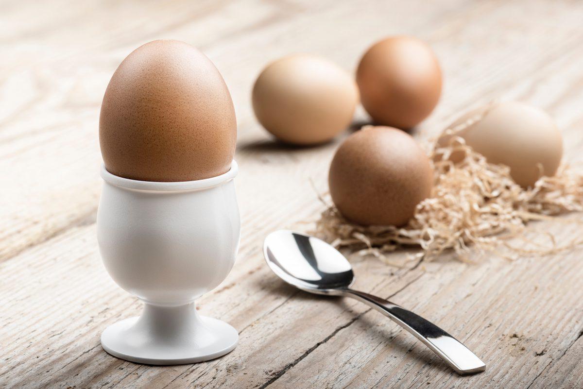 Die ideale Temperatur für das perfekte Ei