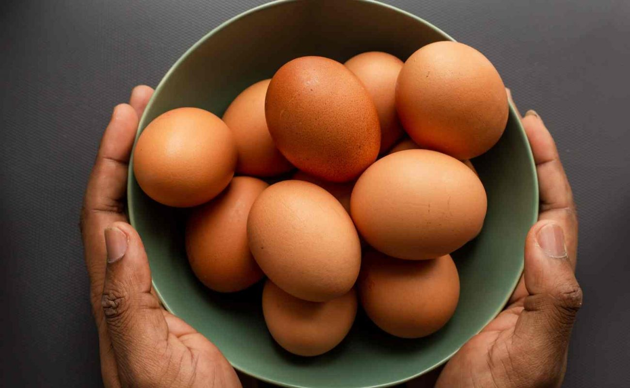 Eier lagern