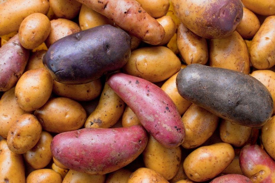 Festkochende Kartoffeln eignen sich am besten für Folienkartoffeln vom Grill